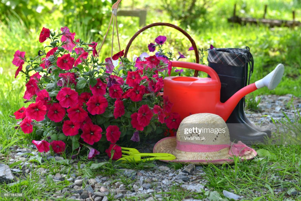 Garden Still Life With Petunia Straw Hat Watering Can Stock Photo ... 057f95e0dae5