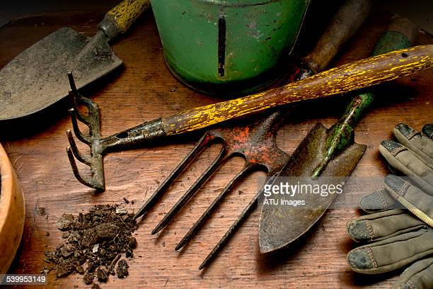garden tools on wood - gardening equipment stock pictures, royalty-free photos & images