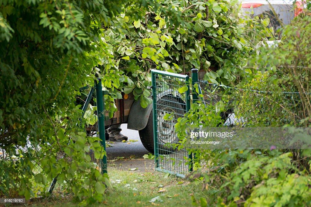 Garten-Abfall : Stock-Foto