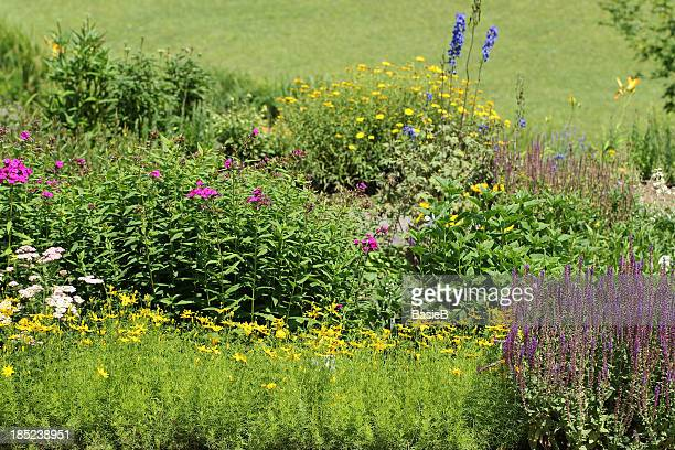 Garden with flowers and herbs