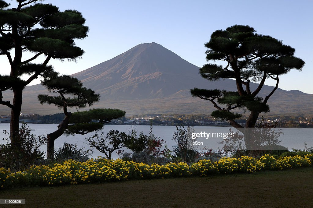 Garden with Lake Kawaguchiko and Mt. Fuji, : Stock Photo
