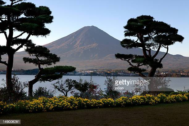 garden with lake kawaguchiko and mt. fuji, - stratovolcano stock photos and pictures
