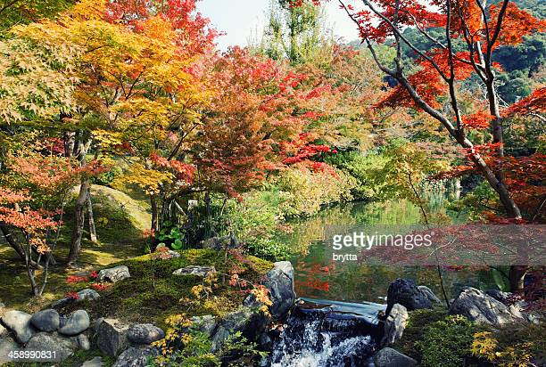 Garden with pond and fall foliage , Eikando Temple ,Kyoto,Japan