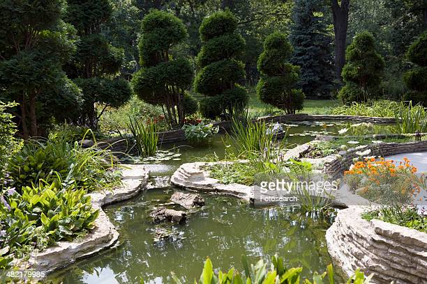 Garden with pond and lily pads