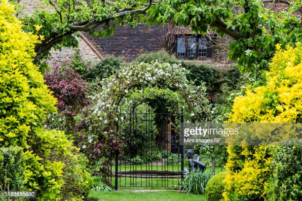 garden with shrubs and arbor with flowering plants in spring, cottage in the background. - cottage stock pictures, royalty-free photos & images