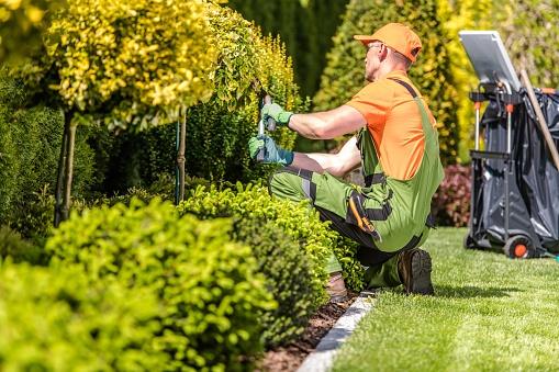 Garden Worker Trimming Plants 1166203849