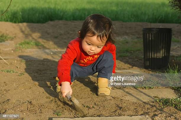 garden world - peter lourenco fotografías e imágenes de stock