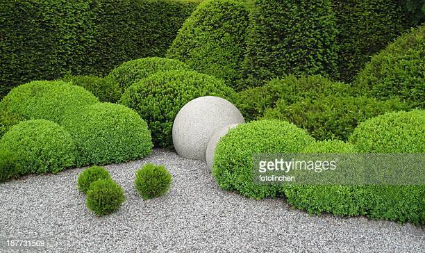 gardendesign with buxus and yew - gravel stock pictures, royalty-free photos & images