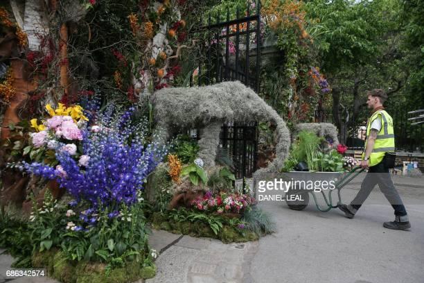 Gardener carries flowers in a wheelbarrow through 'Gateway to the Garden Safari' designed by Simon Lycett, through one of the entrances of the...