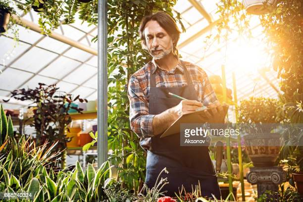 Gardener considers plants in the greenhouse