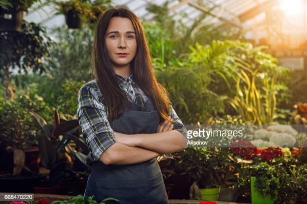 gardener in the greenhouse - ukraine stock pictures, royalty-free photos & images