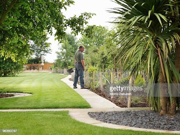 Gardener Inspecting Shrubs In Border