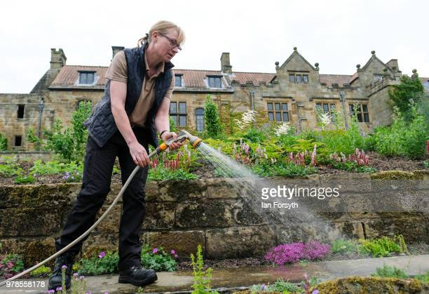 Gardener Karen Greenwood waters the flowers at Mount Grace Priory ahead of a media event to launch a new arts and craft style garden created by...