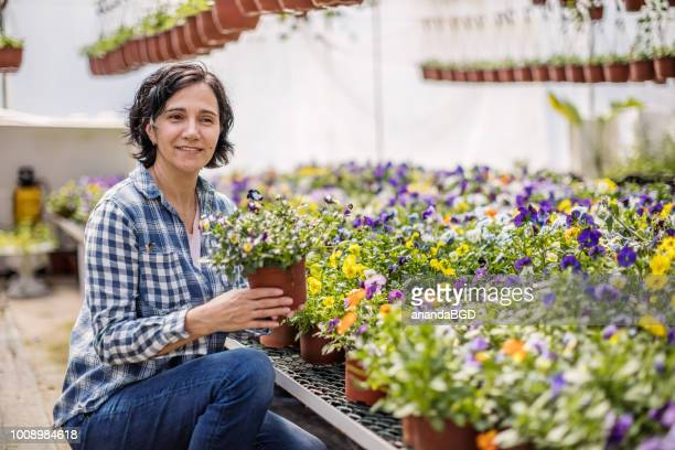 gardener - landscaped stock pictures, royalty-free photos & images