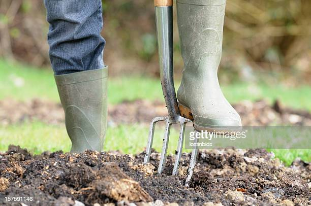 Gardener Preparing A Vegetable Patch