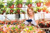 gardener taking snapshot her flowers to