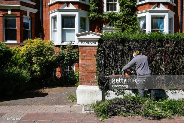 A gardener trims a hedge outside a row of terraced residential properties in the Battersea district of London UK on Tuesday May 12 2020 The pandemic...