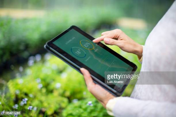 gardener using digital tablet for information about new plants - agriculture stock pictures, royalty-free photos & images
