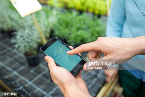 gardener using mobile phone in greenhouse - portability stock pictures, royalty-free photos & images
