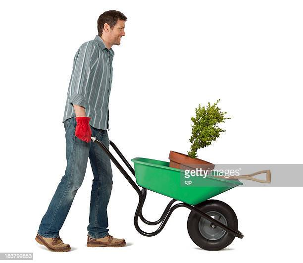 gardener with wheelbarrow on white background - wheelbarrow stock photos and pictures