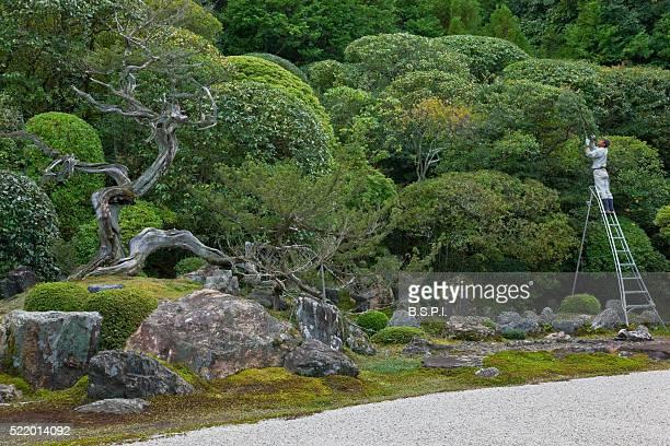 Gardener Working at Konchi-in Zen Buddhist Temple in Kyoto, Japan