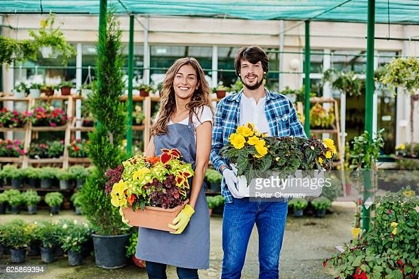 Gardeners holding flowers in planter boxes