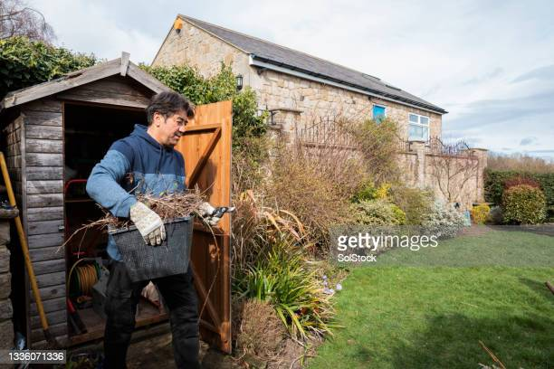 gardening at home - one senior man only stock pictures, royalty-free photos & images