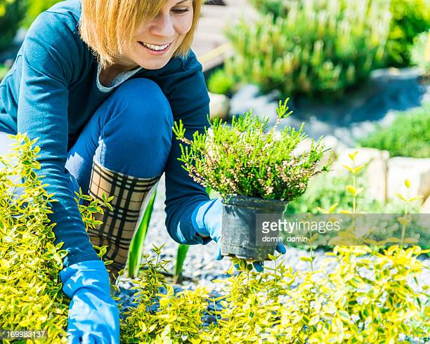 Gardening, attractive smiling woman working in garden and planting seedlings
