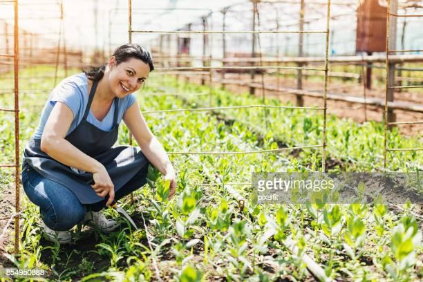 Gartenbau-Unternehmer