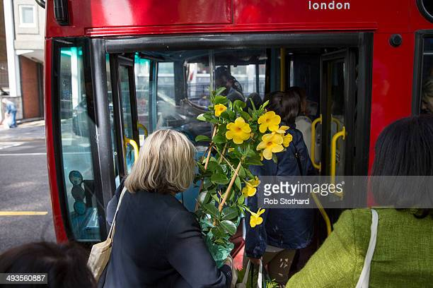 A gardening enthusiast queues for a bus with flowers purchased on the final day of the Chelsea Flower Show at Royal Hospital Chelsea on May 24 2014...