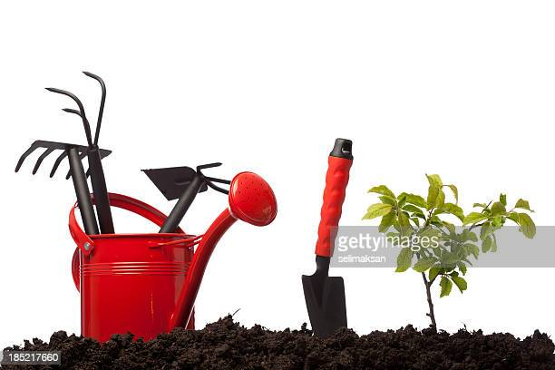 gardening equipmnets in watering can on dirt, white background - tongs work tool stock photos and pictures