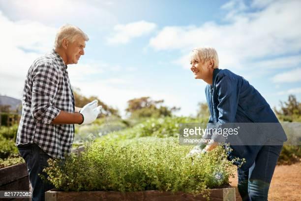 Tuinieren verbetert positieve communicatie tussen ons