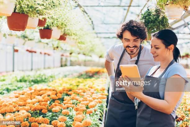 indústria de jardinagem - orange farm - fotografias e filmes do acervo