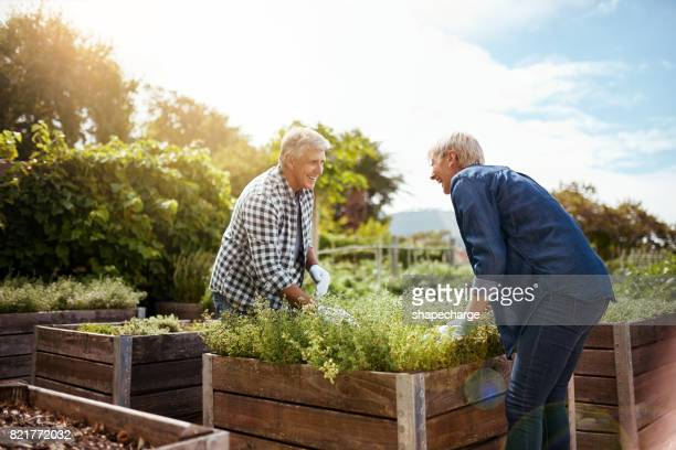 Tuinieren houdt u actief