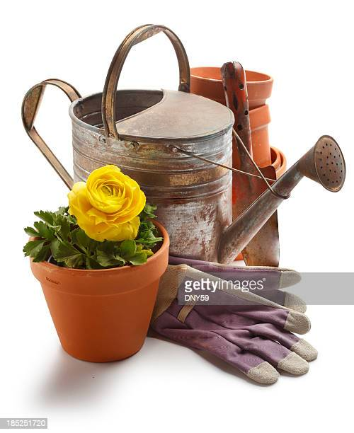 gardening - gardening equipment stock pictures, royalty-free photos & images