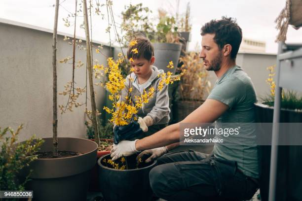 gardening time with my daddy - balcone foto e immagini stock