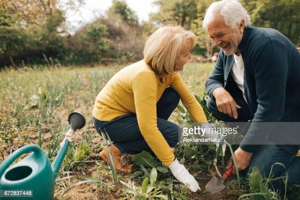 Gardening zusammen