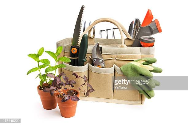 gardening tool bag and potted plant seedlings isolated on white - gardening equipment stock pictures, royalty-free photos & images