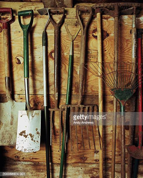 Gardening tools hanging on shed wall