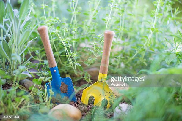 Gardening tools in herb garden