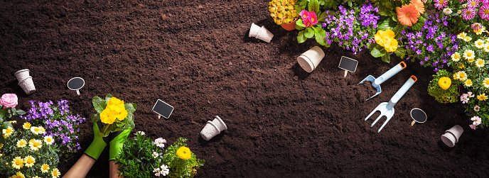 Gardening Tools on Soil Background 1140174200