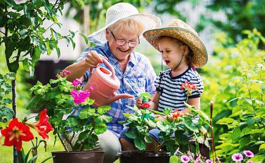 Gardening with a kids. Senior woman and her grandchild working in the garden with a plants. Hobbies and leisure, lifestyle, family life 1071908288