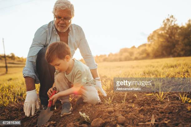 Gardening with my grandson
