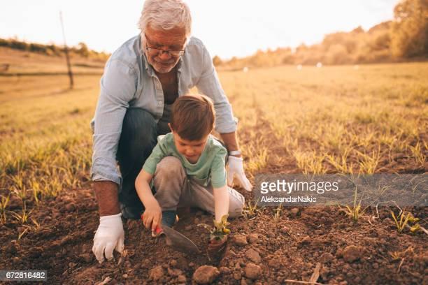 Gardening with my grandson