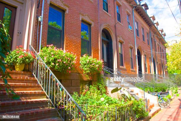 gardens and staircases at quality row, cambridge ma - cambridge massachusetts stock pictures, royalty-free photos & images