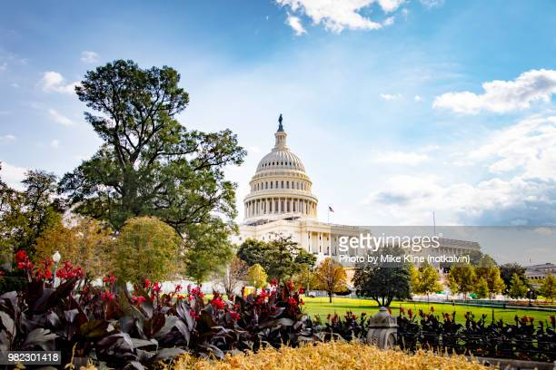 gardens at the capitol - washington dc stock pictures, royalty-free photos & images