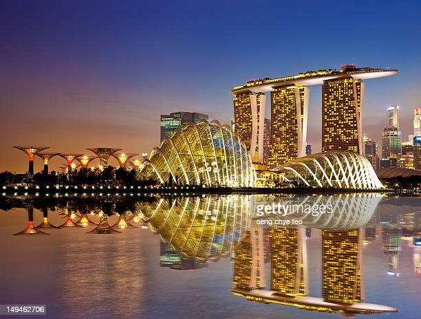 gardens by bay - singapore stock pictures, royalty-free photos & images