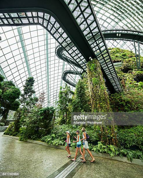 Gardens by the Bay, Cloud Forest Dome (Best Buildings of 2012 section: landscape, architect: Wilkinson Eyre and Grant Associates), the interior