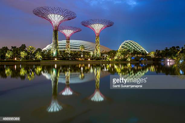 Gardens by the Bay is a park spanning 101 hectares of reclaimed land in central Singapore, adjacent to the Marina Reservoir. The park consists of...