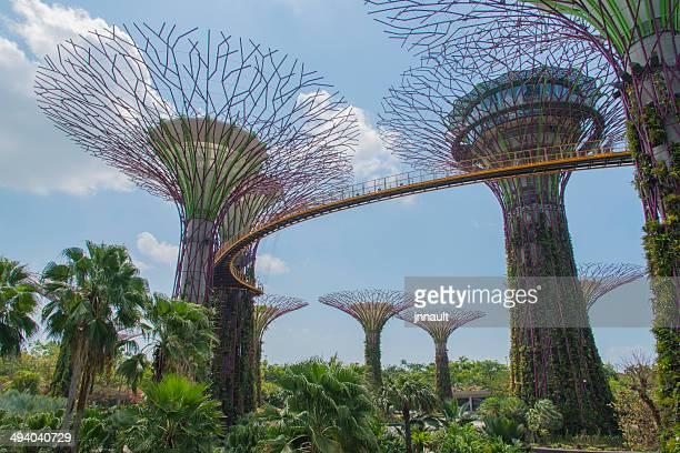 ガーデンズ・バイ・ザ・ベイシンガポール